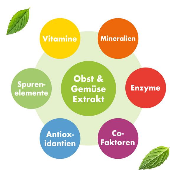 Plantamaxx Pro Immun 26 Kapseln Vitamine und Mineralien