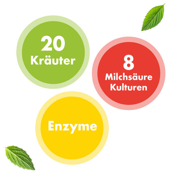 Plantamaxx Bio-Essenz Inhalt